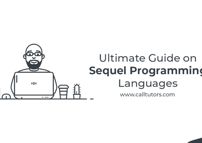 Ultimate Guide On Sequel Programming Languages
