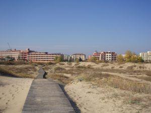 Солнечный берег. Дорога с пляжа через дюны.