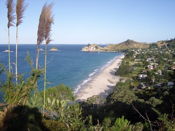 View of Hahei Beach Coromandel