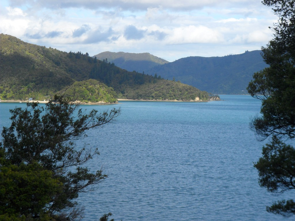 View of Marlborough Sounds in the evening