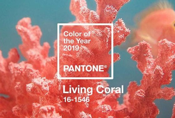 living-coral-pantone-colour-2019