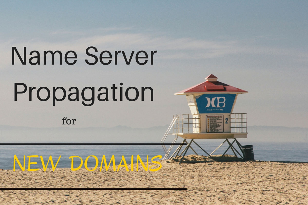 Checking Name Server Propagation for New Domains
