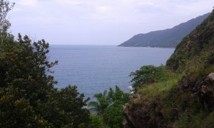 nice view KP