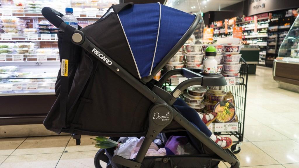 RECARO Performance Denali Luxury Stroller