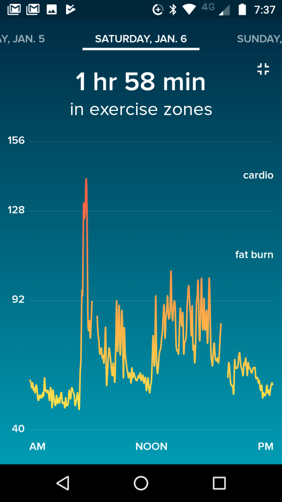 Fitbit Blaze Data