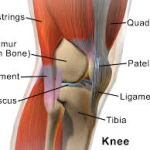Banish Runner's Knee With These Exercises