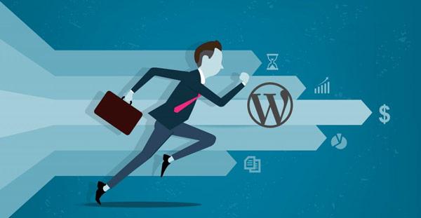 plugin for optimizing your WordPress site speed