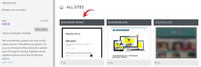 MediaTemple WordPress sites