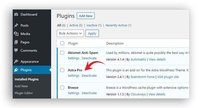 installing astra pro addon plugin
