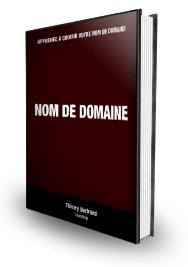 Comment Choisir Un Nom De Domaine (eBook)