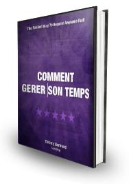 Les Secrets De La Gestion Du Temps (e-book)