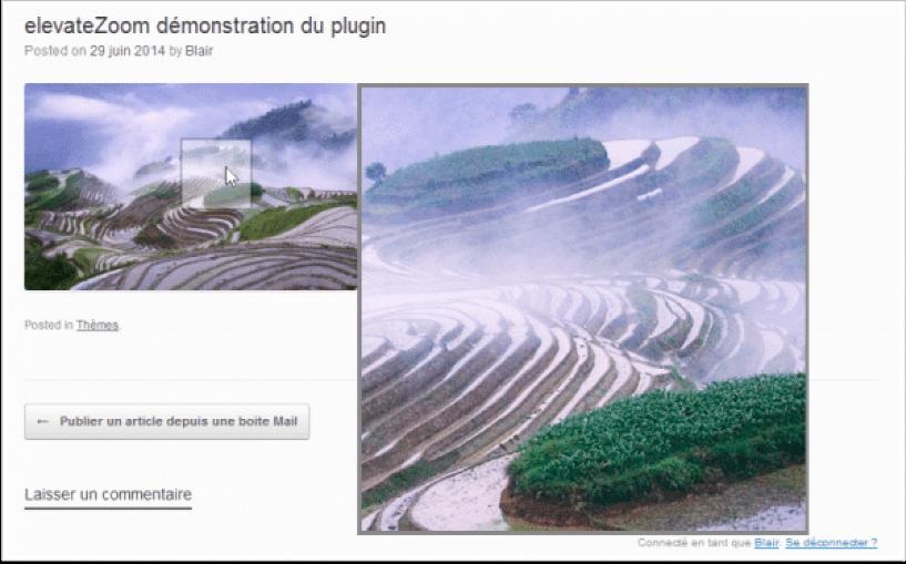 elevateZoom-en-cours-d-utilisation-comment-créer-un-effet-zoom-sur-les-images