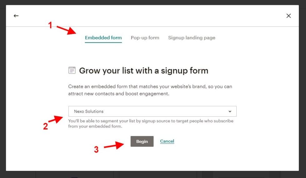 Choisir un type de formulaire mailchimp
