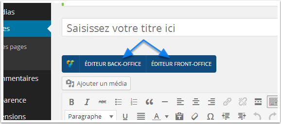 Editor-the-front-end-the-editor-backend