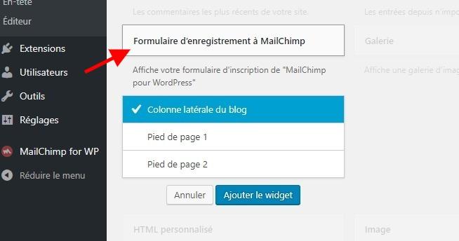 Formulaire dabonnement widget mailchimp