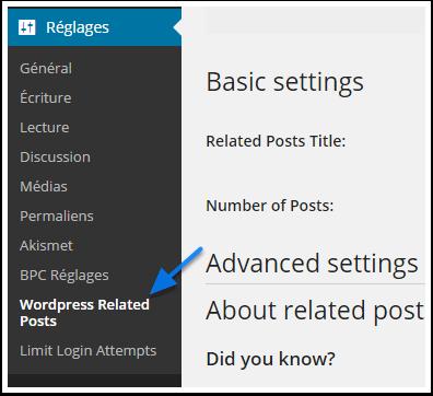 wp-related-posts-menu