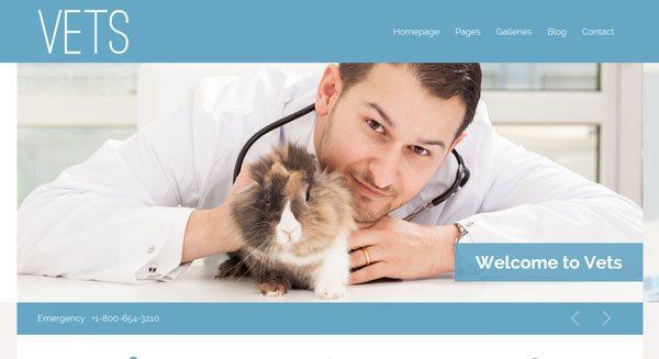 VETS : un thème WordPress pour créer un site de vétérinaire
