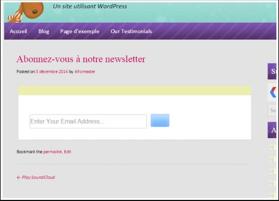 comment ajouter un formulaire mailchimp sur blog wordpress