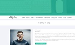 Signature-theme-WordPress-to-create-the-website-of-your-resume