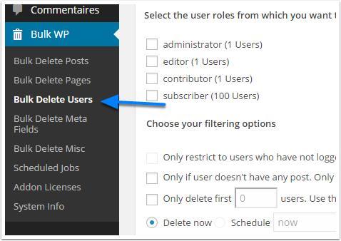 how to bulk delete users in wordpress