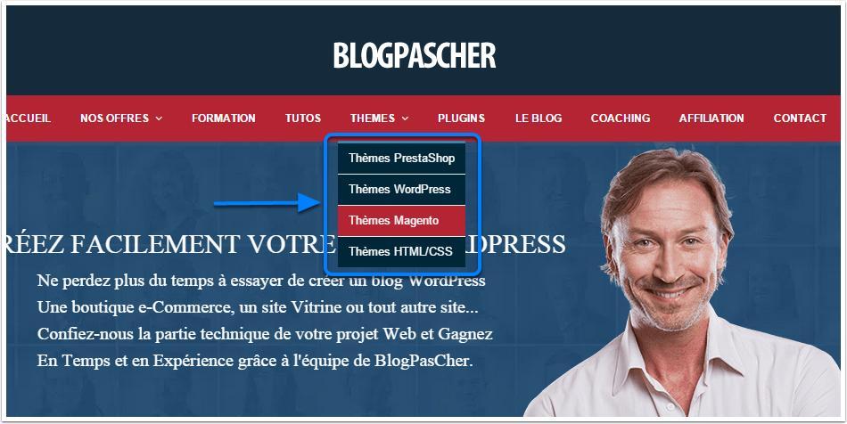 blogpascher-пример