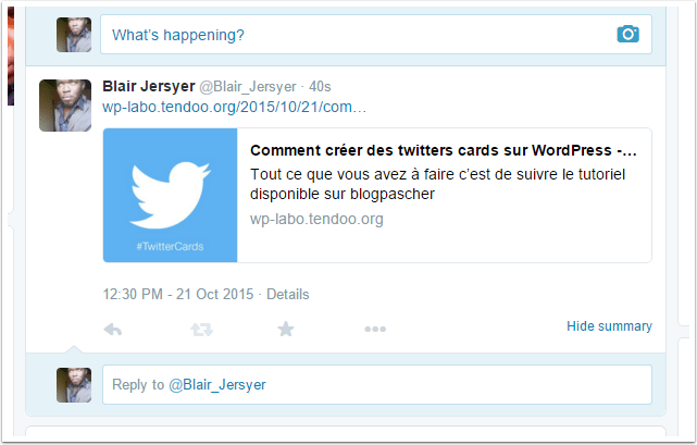 twitter-card-exemple