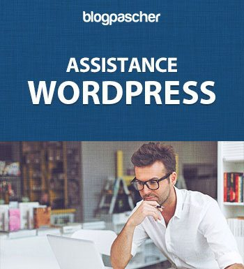 Assistance – Maintenance WordPress