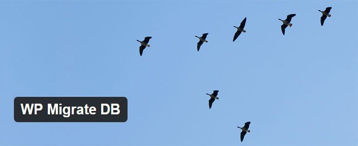 WP-db-migrate-eklentisi