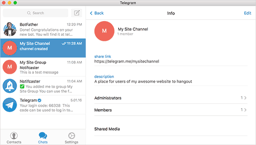 Options d'un channel Telegram pour WordPress