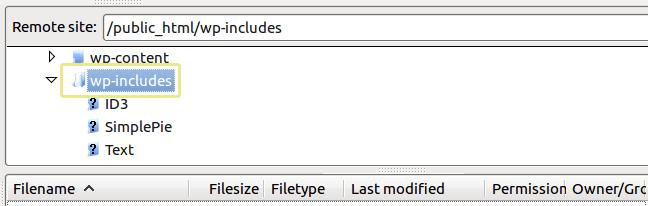 Klasör wordpress wp-includes