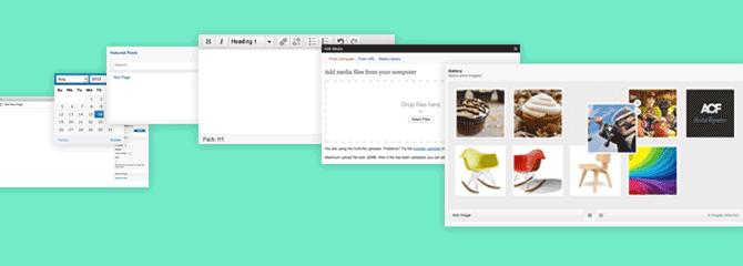 Advanced-Custom-Fields-plugin WordPress