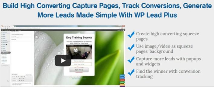 WP-Lead-plus-plugin WordPress pour page d'accueil