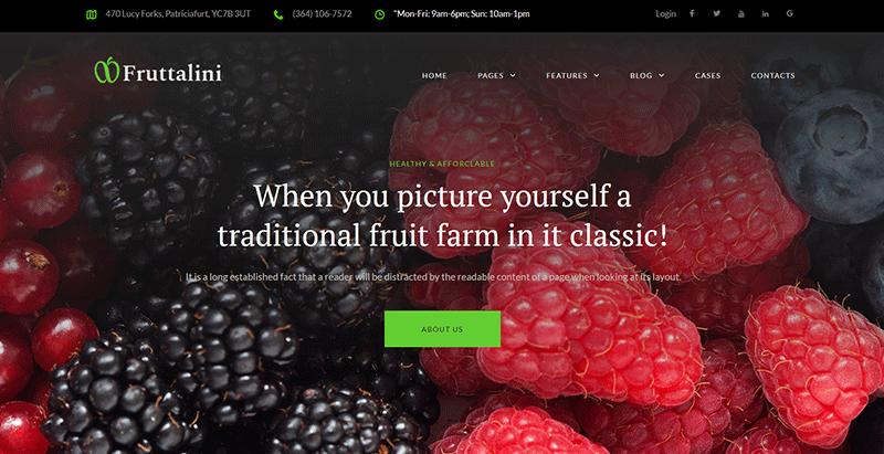 meilleurs thèmes WordPress de fermier - Fruttalini