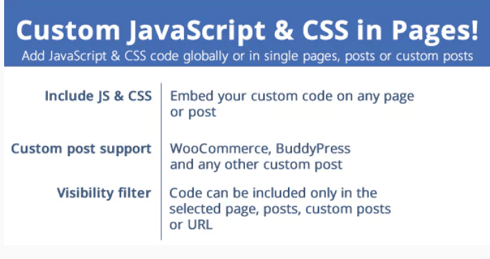 Custom javascript css in pages plugin wordpress e1558356028853