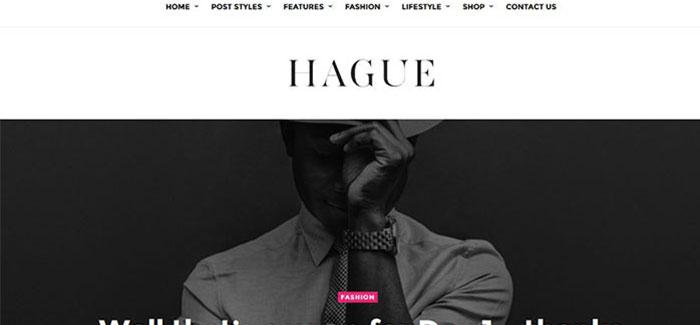 Aia-10-temi-per-wordpress-magazine-blogpascher
