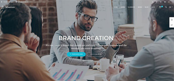 roneous-themes-wordpress-personnes-agences-creatives-blogpascher