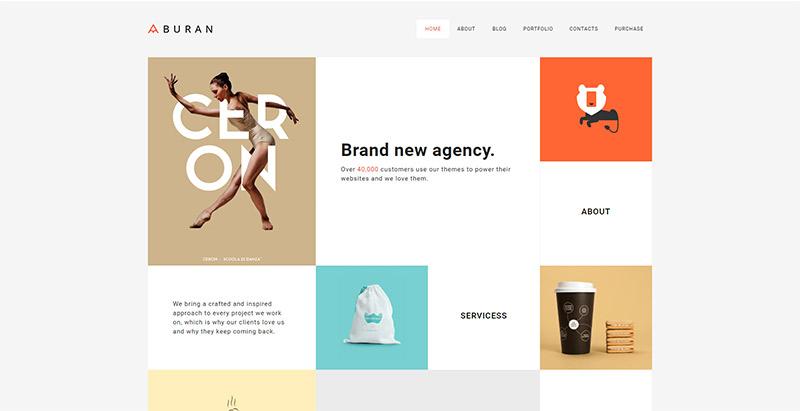 Буран-тема-WordPress создать-сайт-интернет-агентство-творческо-архитектор-фотограф