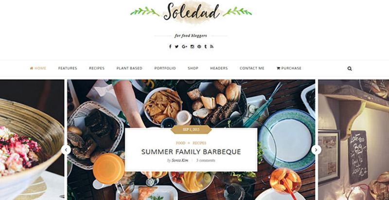 Soledad 10 meilleurs themes wordpress creer site internet