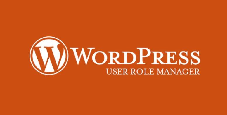 user-role-gerente-plugin-wordpress-to-user-papéis