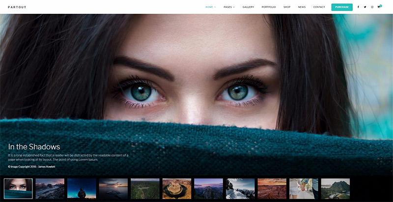 10 Temas de WordPress para crear un sitio web de la cartera ...