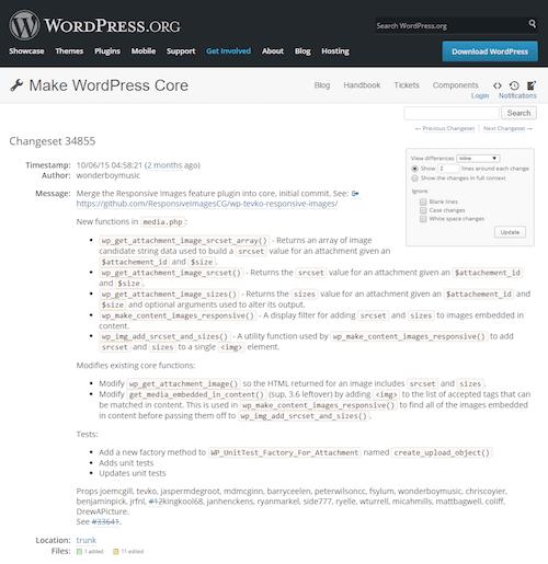 responsive-image-trac-wordpress