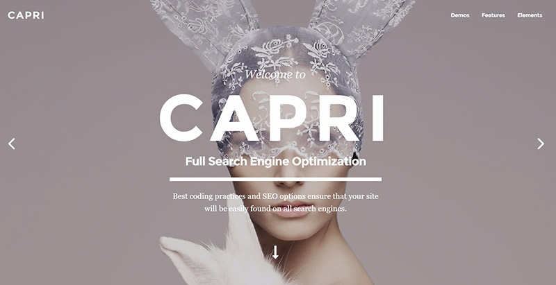 Capri 10 themes wordpress creer site web