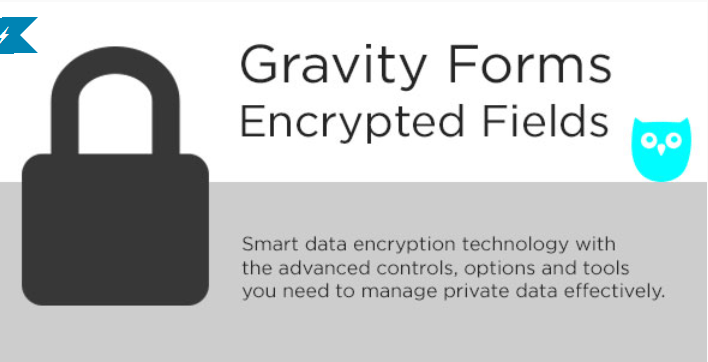 Gravity forms encrypted fields plugins wordpress integrer politique confidentialite