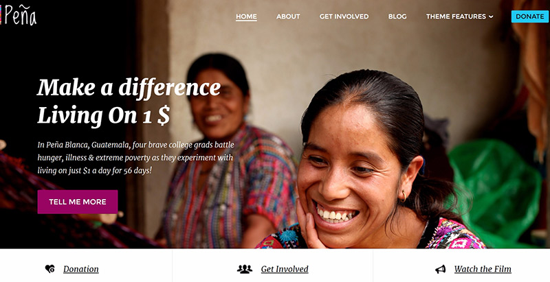 Pena themes wordpress creer site web ong humanitaire