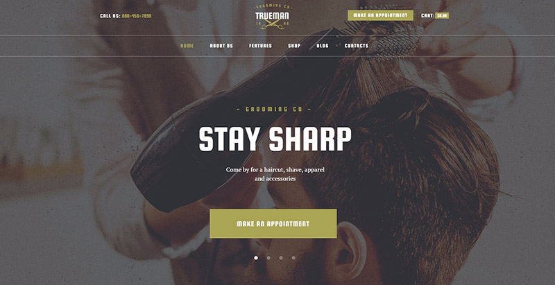 Trueman themes wordpress creer site web salon coiffure spa beaute