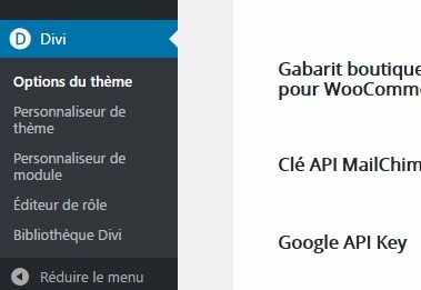 Menu divi tableau de bord wordpress