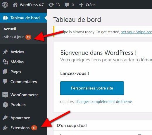 Cómo actualizar correctamente un plugin en WordPress | BlogPasCher