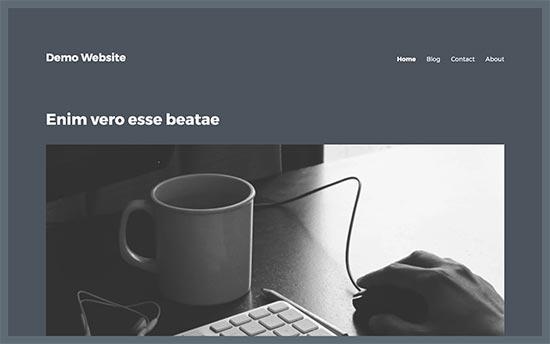 Ví dụ về chủ đề Wordpress không có thanh bên