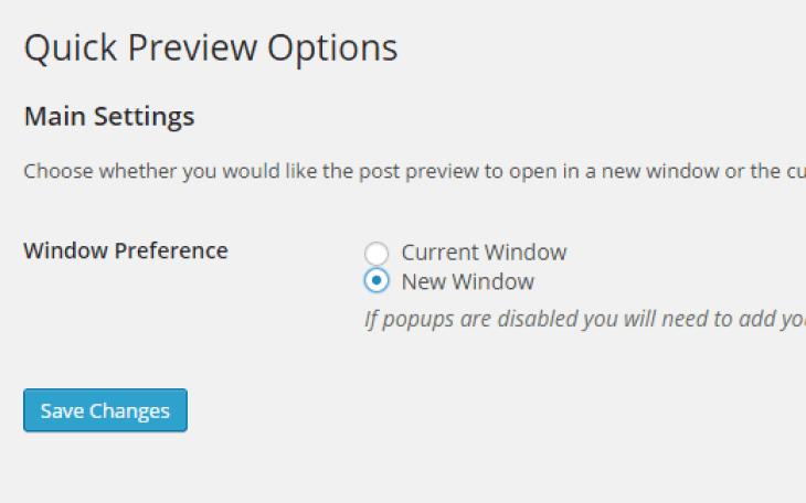 enregistrer des articles sur WordPress ou comment prévisualiser des articles sur WordPress Quick preview settings