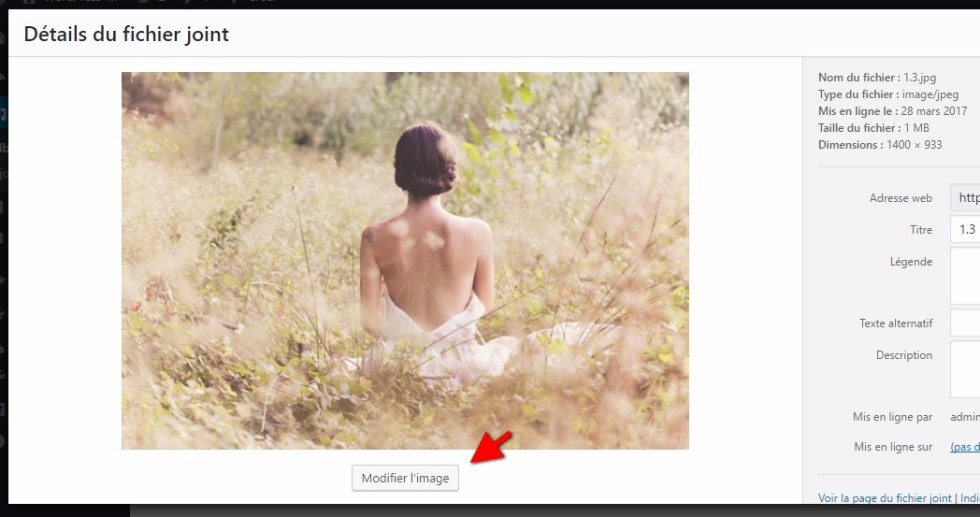 redimensionner des images - Modifier une image wordpress media